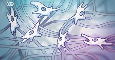 筋膜的秘密:皮肤下的神秘世界(上集)